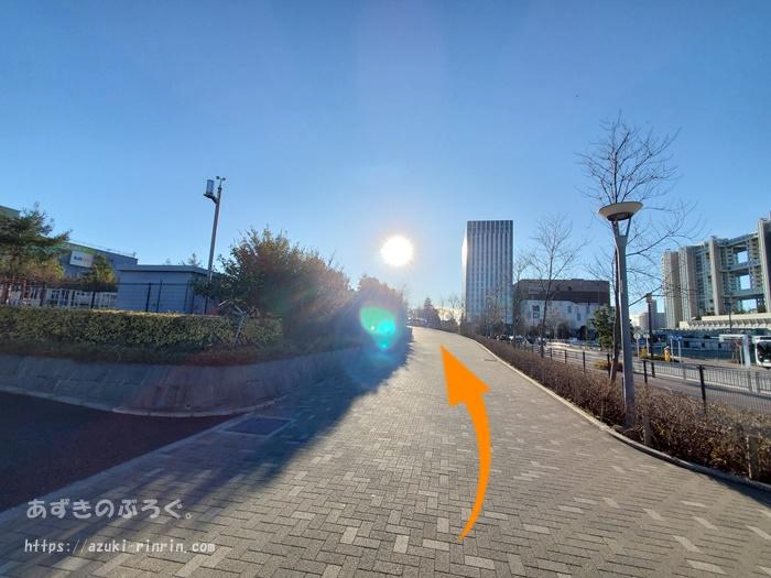 ariake-odaiba-course-201912_13