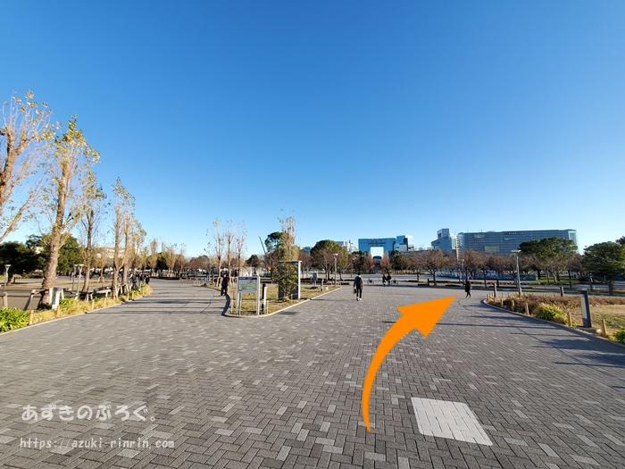 ariake-odaiba-course-201912_31