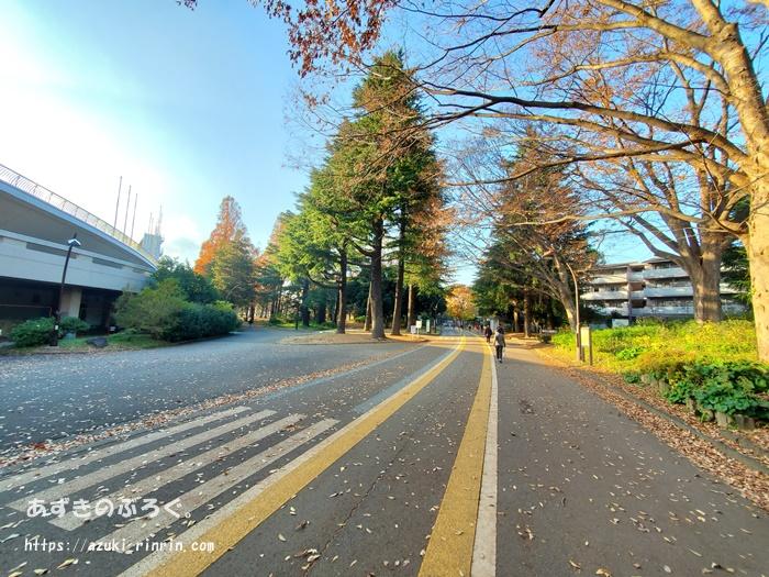 komazawapark-running-course_12