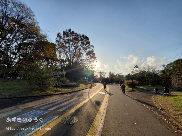 komazawapark-running-course_15