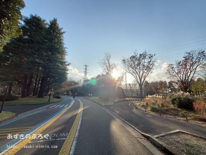 komazawapark-running-course_16