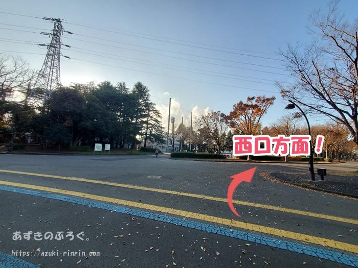 komazawapark-running-course_18