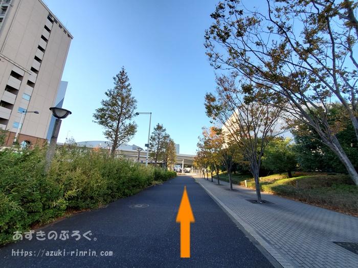 ariake-toyosu-course_06