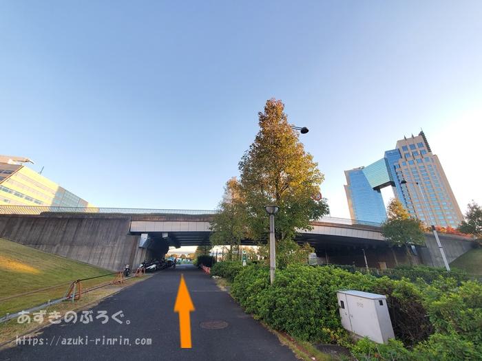 ariake-toyosu-course_27