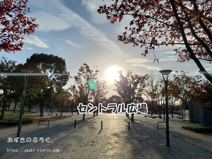 hutarisezon-odaiba-running_12
