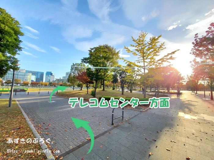 hutarisezon-odaiba-running_14