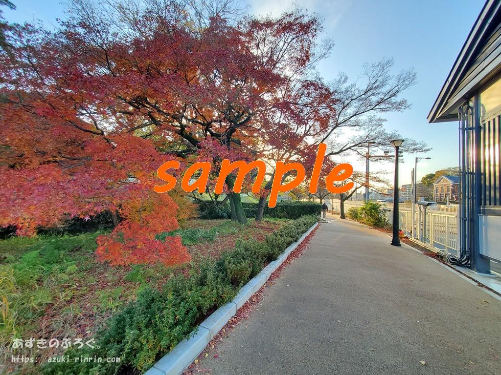 file-extension-sample-mix-b