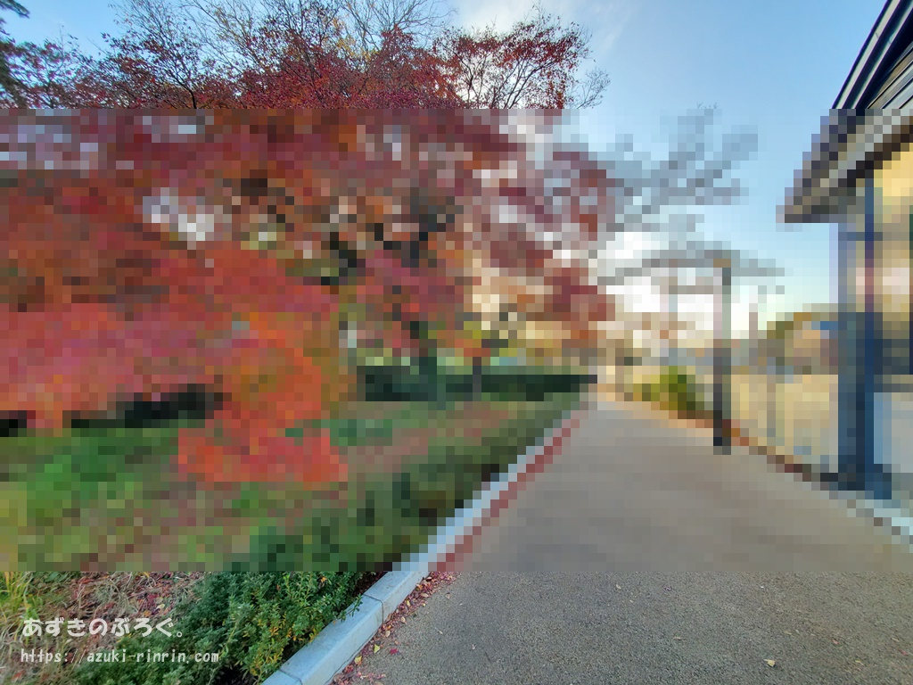 gimp-blur-sample-af-20191221