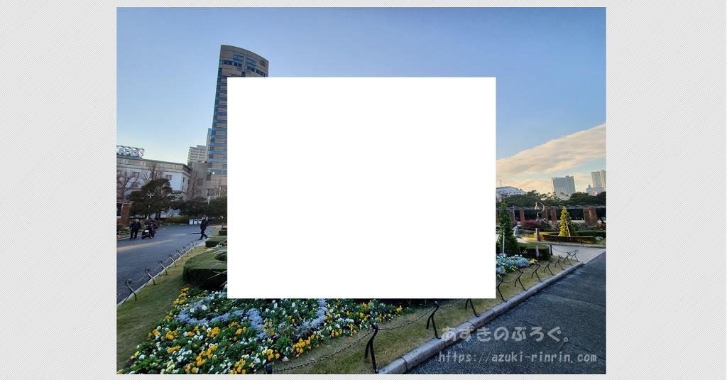 photoscape-shade-20191226_05